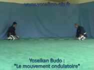 Yoseikan Budo : le mouvement ondulatoire